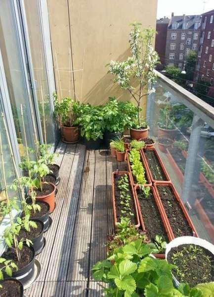 small balcony garden apartment patio