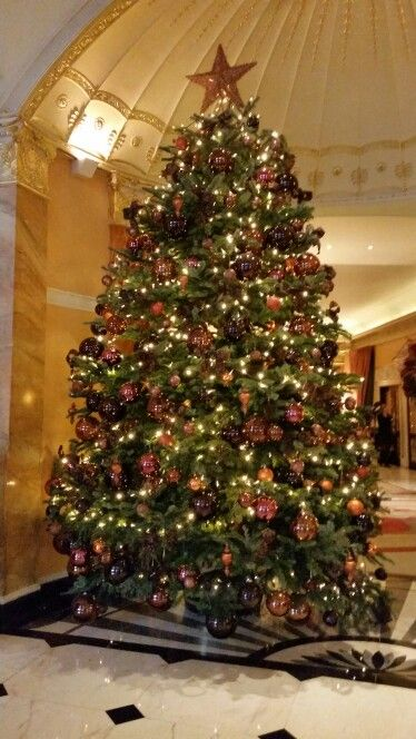 131 best Christmas in London images on Pinterest  Christmas in