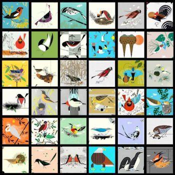 9 Piece Bird Puzzle Solution