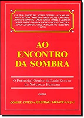 Ao Encontro Da Sombra 9788531604508 Livros Na Amazon Brasil Em 2020 Lado Escuro Audre Lorde Te Encontrei