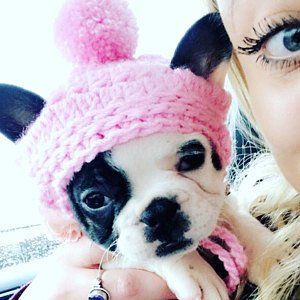 Handmade Crochet Pet Clothes Small Dog Breed French Bulldog Hat Beanie Dress Up