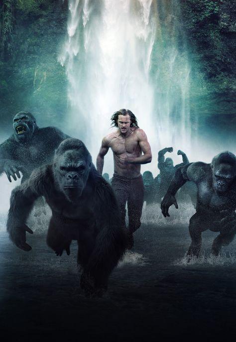 HD wallpaper: 4K, The Legend of Tarzan, 2016 Movies