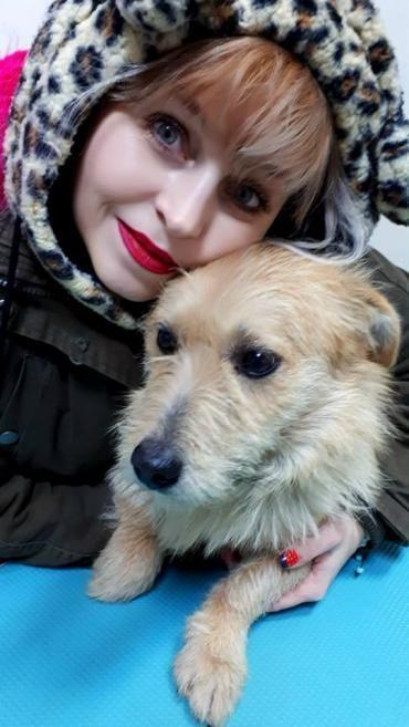 Hund Mischling Mischling Rude 1 5 Jahre In Alfdorf Baden Wurttemberg Nemo Haustier Tiervermittlung Mischling