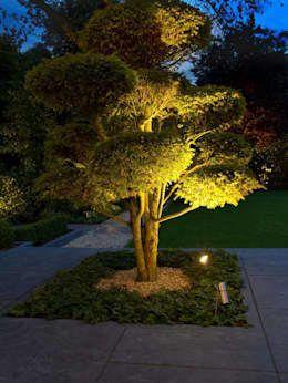 Indirekte Beleuchtung Fur Drinnen Und Draussen Indirekte Beleuchtung Schafft Eine Optimale Optik Und I Outdoor Tree Lighting Landscape Lighting Garden Lighting