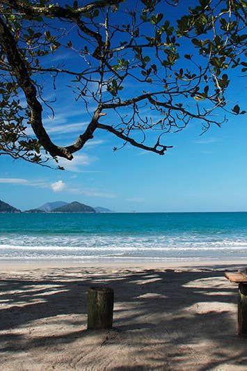 Ilha Das Couves Ubatuba Castelhanos Ilhabela Praias Do