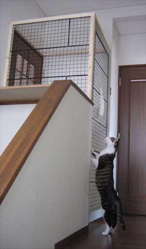 家の中に猫用二重ドア 家 猫 猫ゲージ