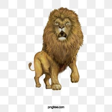Animals Png Images Vector And Psd Files Free Download On Pngtree Lion Illustration Colorful Lion Animal Illustration