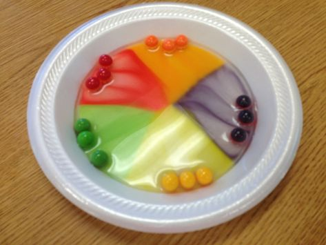 Cool science experiment with gobstoppers and water. Why don't the colors mix? That's the experiment. My 5th graders lived this!