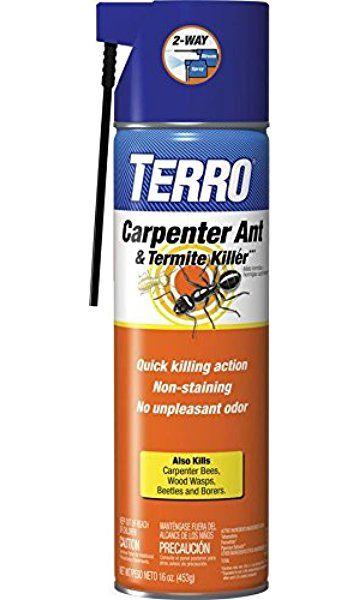 Pin On Gettin Rid Of Termites