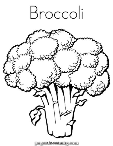 Charismatic Twistynoodle Com Broccoli Coloring Web Page Broccoli