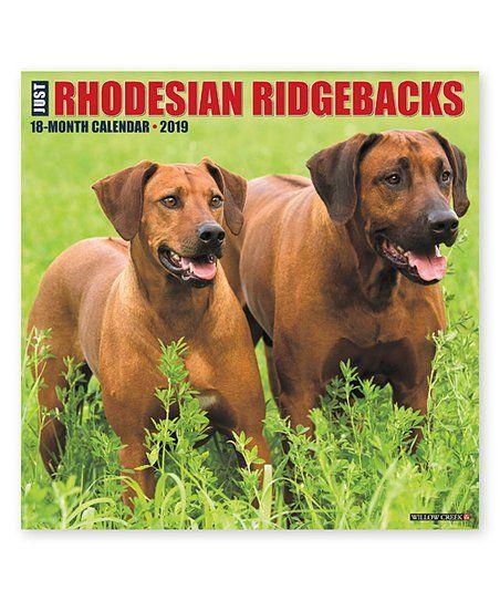 Willow Creek Press 2019 Just Rhodesian Ridgebacks Wall