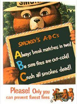 How To Design A Prevent Forest Fires Poster Click Here Forest