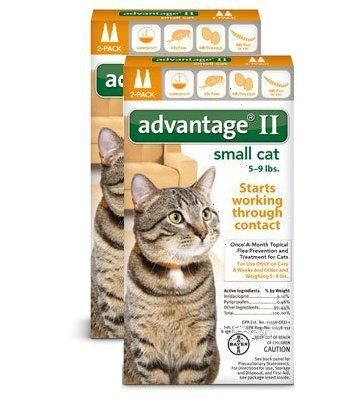 Bayer Advantage 2 Small Cat 2 Pack 5 9 Orange Pack Of 2 Small