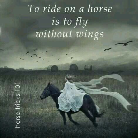 To ride a horse is to fly without wings. Quote. Horse quote ...