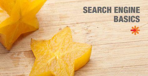 Search Engine Optimization for Photographers – SEO Basics