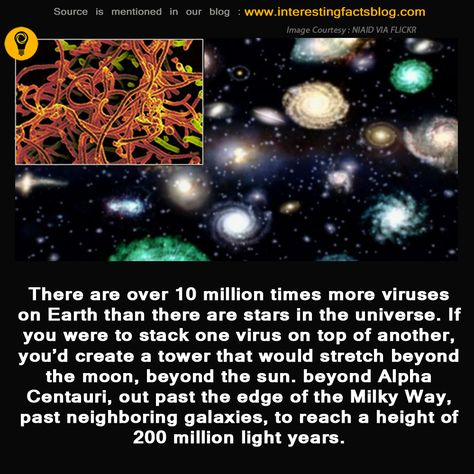 How Many Number Of Viruses On Earth With Images Fun Facts