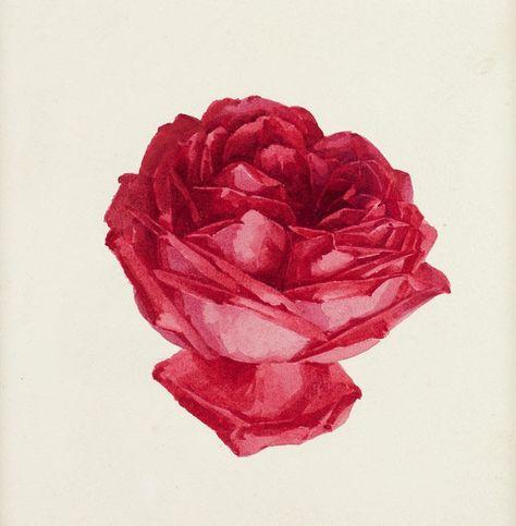 Summer Fragrance by Paul de Longpre Art Print of Vintage Art