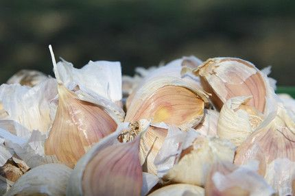 love the style of this video on how to peel garlic