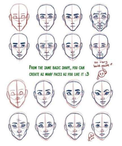 33 Trendy Drawing Reference Face Shape Drawing Drawing Face Shapes