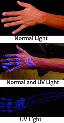 No worries, I won't be getting a skeleton tattoo, just wanted to show how the white ink looks under a blacklight. ALTHOUGH, as a chiropractor's wife, it might be helpful to have a spine tattoo. LOL. Not going to happen (c;