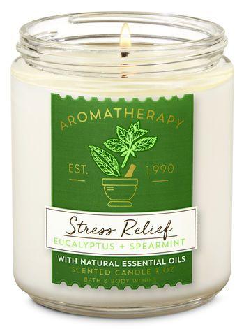 Eucalyptus Spearmint Single Wick Candle Aromatherapy Aromatherapy Candles Candle Scent Oil Essential Oil Candles