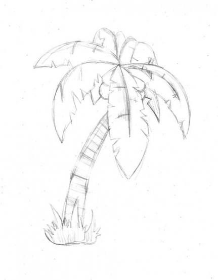 56 Ideas For Palm Tree Drawing Simple Palm Tree Drawing Tree Drawings Pencil Palm Trees Painting