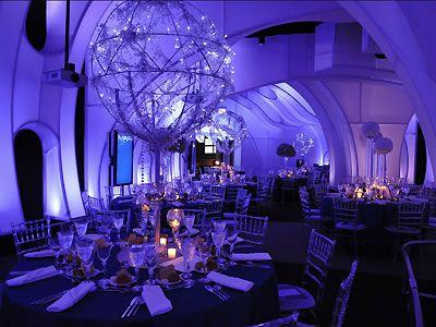 Adler Planetarium Downtown Chicago Wedding Venues Reception Illinois
