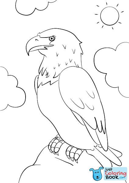 Cartoon Bald Eagle Coloring Page Free Printable Coloring Pages Pertaining To North American Bald Eagle Coloring Pages