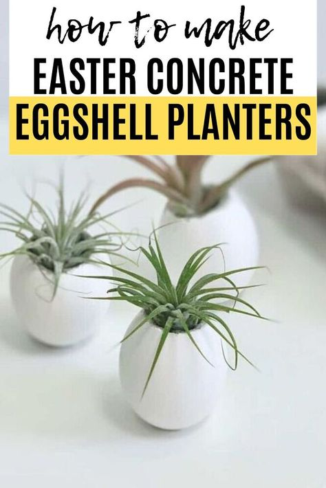 You can make adorable air plant planters from eggshells that are so durable, they'll last year over year. The secret is adding concrete. Check out this fun and easy Easter craft project and decorate your entryway console or fireplace mantle for Easter on a budget. Cute and easy Easter decoration idea.