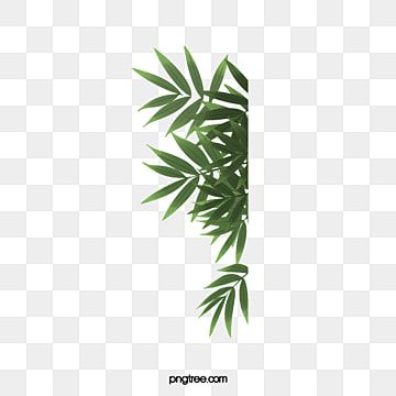 Folha Folhas Folha Verde Imagem Png E Psd Para Download Gratuito In 2021 Flower Background Wallpaper Leaf Clipart Flower Backgrounds