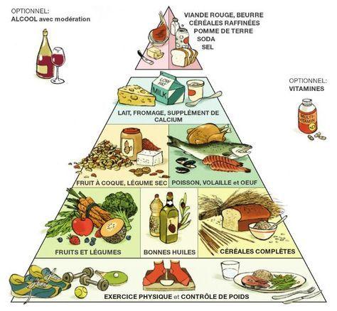 8 Habitudes Alimentaires Pour Garder La Ligne Et Etre En Bonne Sante Pyramide Alimentaire Habitudes Alimentaires Etre En Bonne Sante