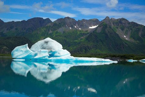 Bear Glacier Iceberg - Kenai Fjords National Park