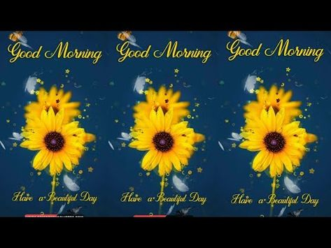 Beautiful Good Morning Video With Flower For A Wonderful Day Youtube Good Morning Gif Good Morning Beautiful Good Morning