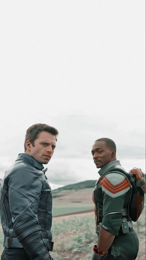 Disney+ The Falcon And The Winter Soldier Wallpaper