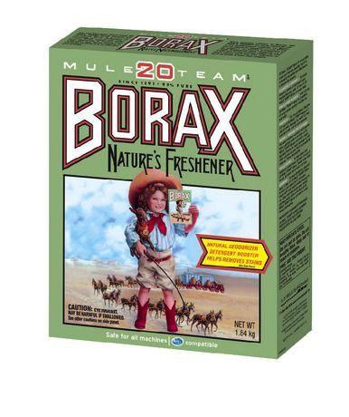 Health Canada Warns Parents Against Using Borax In Crafts Borax