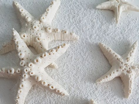 Diy Starfish Made Of Cold Porcelain