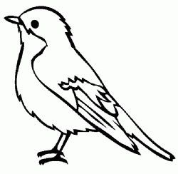 Kus Boyama Sayfasi Bird Coloring Pages Free Printables Bird