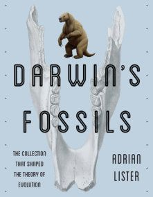 Darwin S Fossils By Adrian Lister 9781588346179 Penguinrandomhouse Com Books Theory Of Evolution Darwin Scientific Thinking