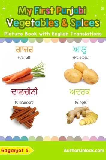My First Punjabi Vegetables Spices Picture Book With English