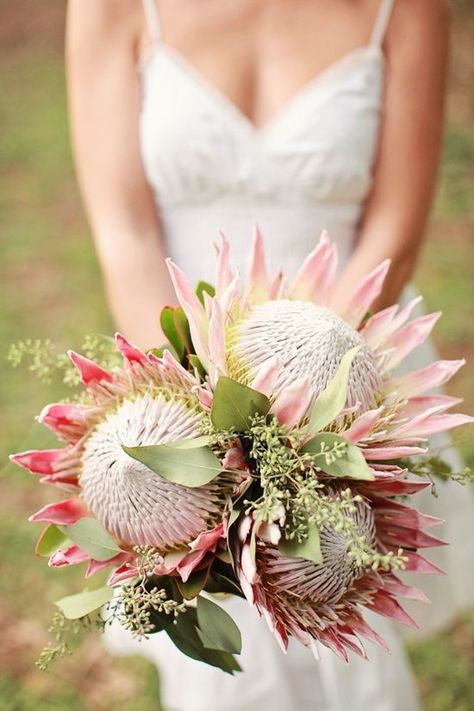 It could be cool to have single King Protea for the bridesmaids and 2-3 stems for the bridal bouquet.