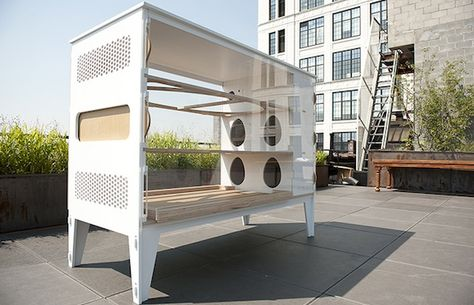 Stylish urban chicken coops perfect for the city dwelling foodie http://ht.ly/cDTKy