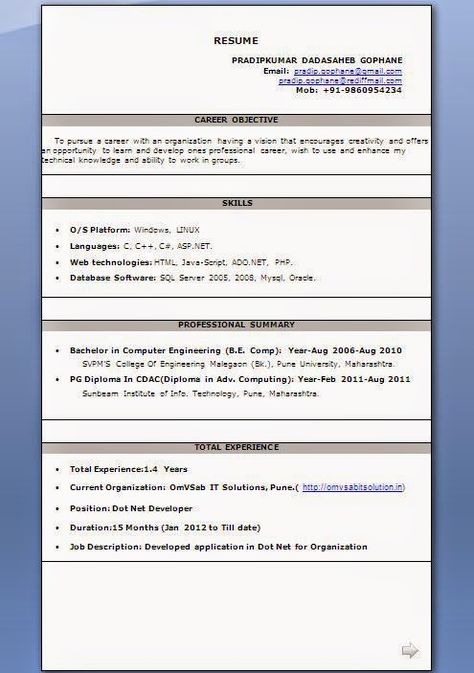 curriculum vitae and resume Sample Template Example ofExcellent - resume samples 2011