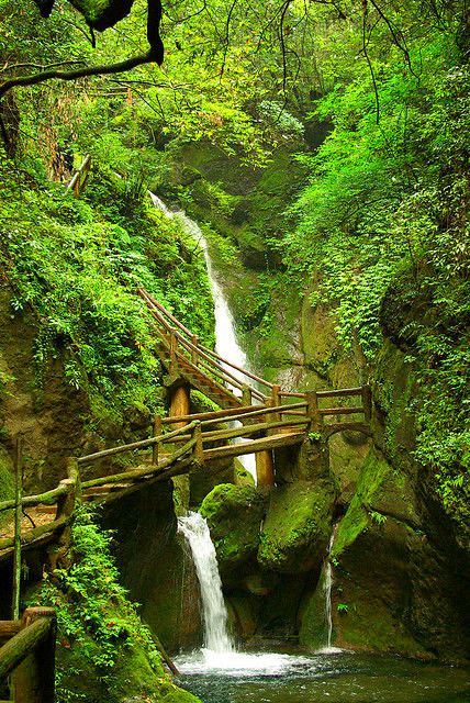 """travelandseetheworld: """"The path to taoist temples of QingCheng Mountain, Sichuan, China Travel and See the World """" Beautiful Waterfalls, Beautiful Landscapes, Beijing, Places To Travel, Places To See, Places Around The World, Around The Worlds, Beautiful World, Beautiful Places"""