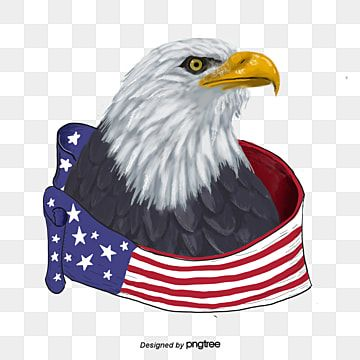 Hand Painted American Flag Eagle Animal National Flag Icon Png And Vector With Transparent Background For Free Download Hand Painted American Flag American Flag Eagle American Flag Background