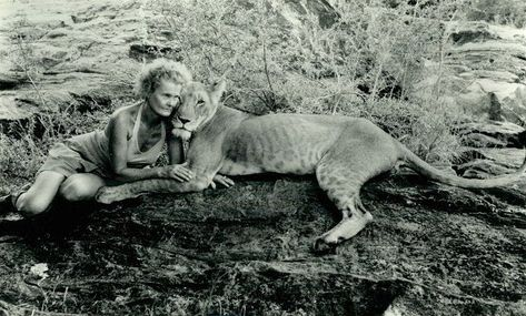 Joy Adamson with Elsa the lioness of Born Free - the site at which Elsa's Kopje now stands in Kenya