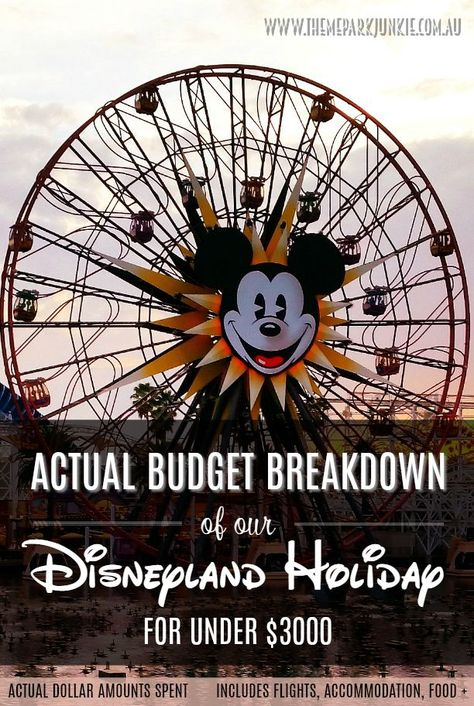 Is a trip to Disneyland unaffordable? How much does it ...