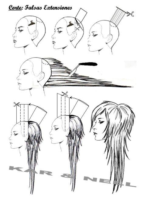 Hair cut diagrams - pinterest.com