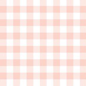Colorful Fabrics Digitally Printed By Spoonflower Pale Coral 5 8 Gingham Check Kotak Kotak Desain Banner Wallpaper Iphone