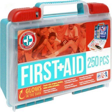 Be Smart Get Prepared First Aid Kit 250 Pc Loghomeinteriors Log Home Interiors First Aid Kit Emergency Survival Kit
