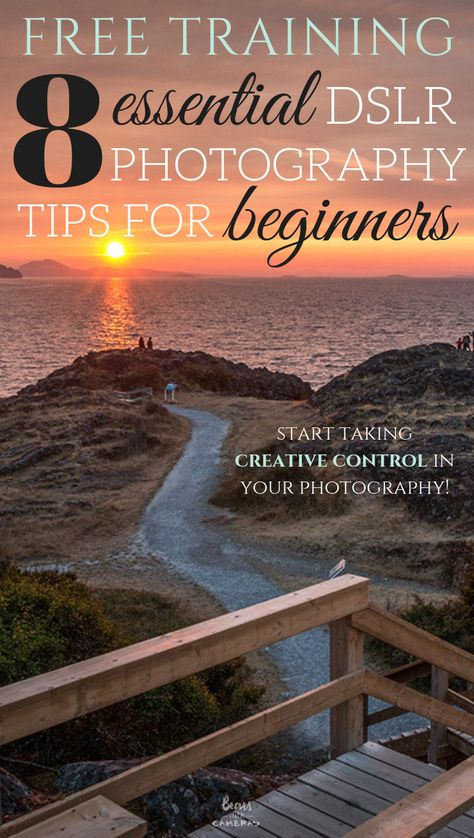 We Re Going To Give You 8 Essential Dslr Photography Tips For Beginners So Y In 2020 Nature Photography Tips Dslr Photography Tips